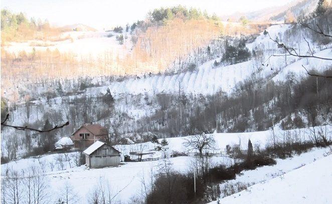 selo bresnik kraljevo